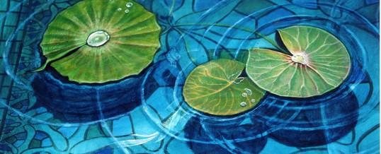 3D Fish Pond